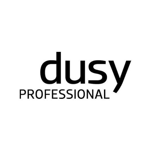 dusy_professional_logo